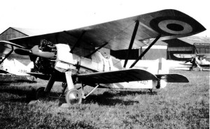 tn_Siskin RAF - 09