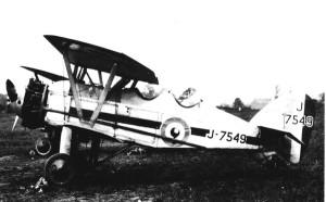 tn_Siskin RAF - 11