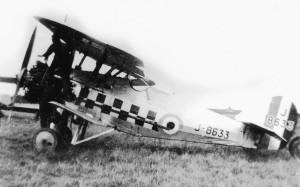 tn_Siskin RAF - 16